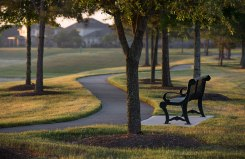 SummerLakes-park-bench_2X