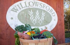 TasteofWillowsford_2012_3_2X