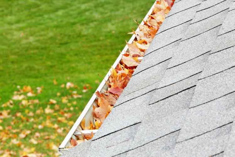 Residential Home Roof Gutter Filled With Autumn Leaves