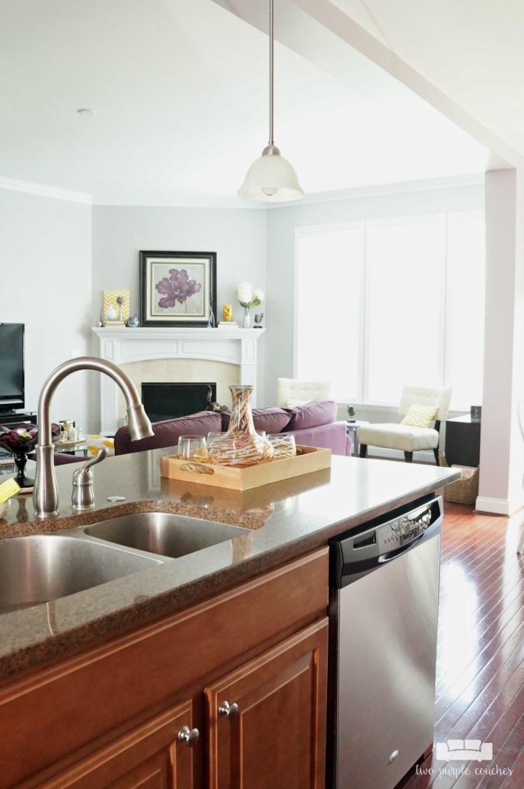 Drees-Homes-Davidson-kitchen-family-room-EK